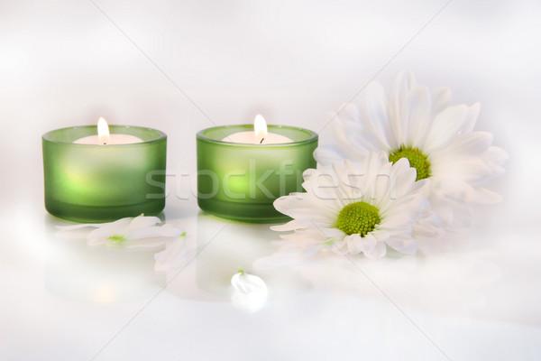Verde velas margaridas sonhador branco saúde Foto stock © Sandralise
