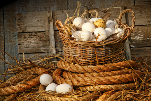 Basket of eggs on straw Stock photo © Sandralise