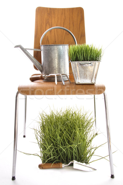 Garden tools, watering can on wood chair  Stock photo © Sandralise