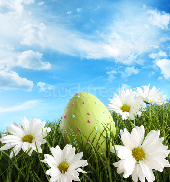 Easter egg in the grass with daisies Stock photo © Sandralise