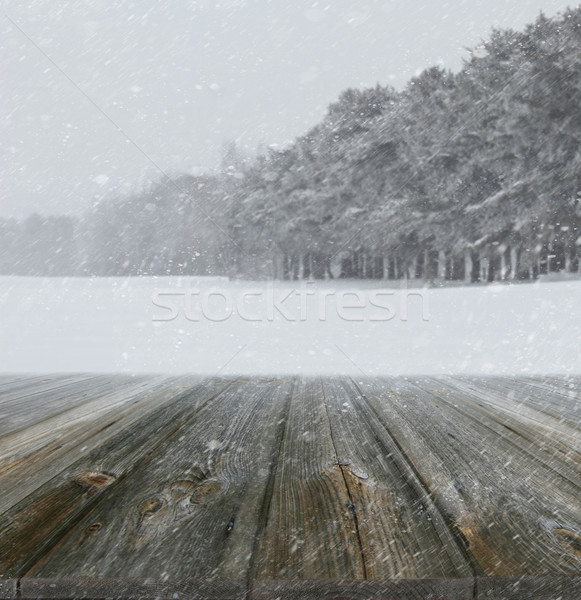 Winter background with wood planks in forefront Stock photo © Sandralise