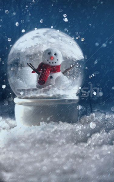 Snow globe in a snowy winter scene Stock photo © Sandralise