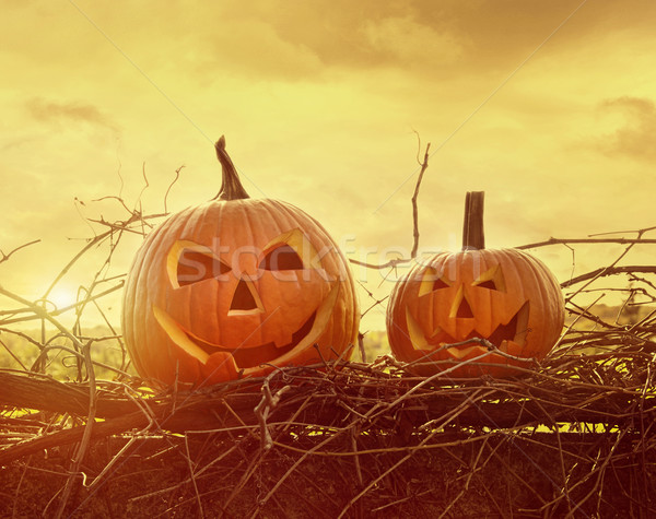 Funny face pumpkins sitting on fence Stock photo © Sandralise