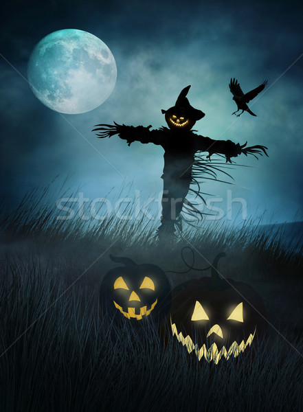 Silohouette of a scarecrow in fields of  grass at night Stock photo © Sandralise