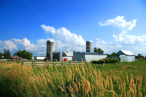 Working farm in rural Quebec, Canada  Stock photo © Sandralise