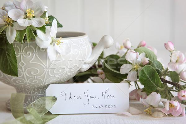 Stock foto: Geschenkkarte · Apfel · Blüte · Blumen · Vase · Blatt