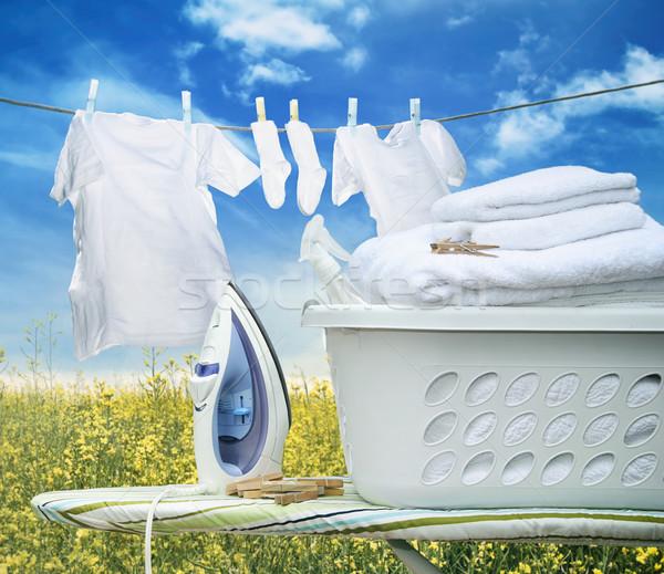 Ferro bordo basket cestino di lavanderia lavoro Foto d'archivio © Sandralise