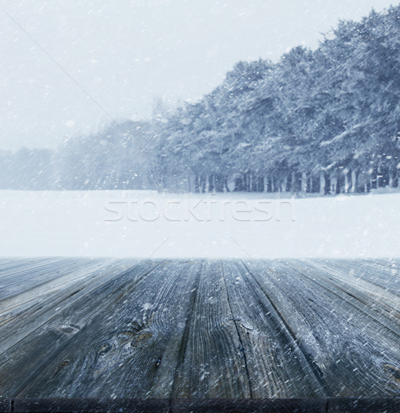 Hiver bois paysage glace blanche Photo stock © Sandralise