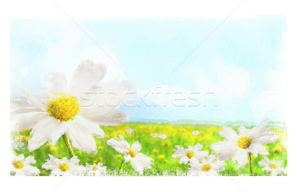 Digital watercolor of large shasta daisies in field Stock photo © Sandralise