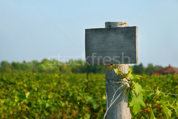 Vineyard wood sign Stock photo © Sandralise