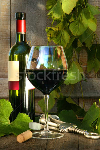 Natürmort şişe cam asma yaprakları Stok fotoğraf © Sandralise