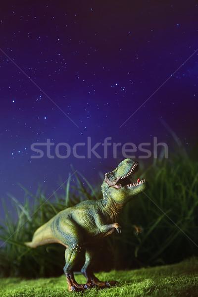 Tyrannosaurus on grass at night Stock photo © Sandralise