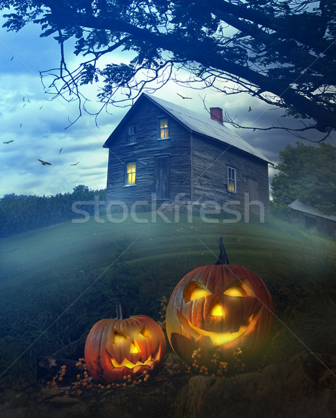 Halloween pumpkins in front of Spooky house Stock photo © Sandralise