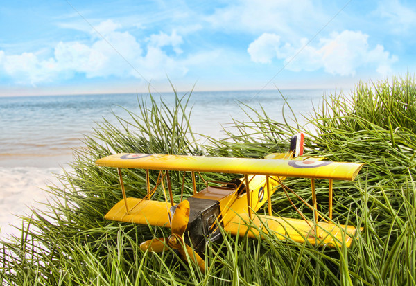 Vintage toy plane in tall grass at the beach Stock photo © Sandralise