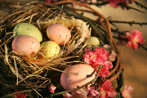 Pink and yellow Easter eggs Stock photo © Sandralise
