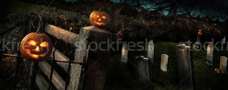 Two Halloween pumpkins sitting on fence Stock photo © Sandralise