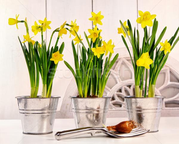 Narcissen tabel voorjaar Pasen bloem bloemen Stockfoto © Sandralise