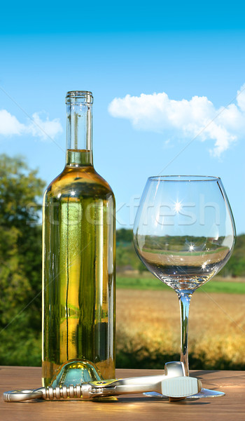 Stock photo: Empty glass with a bottle of white wine