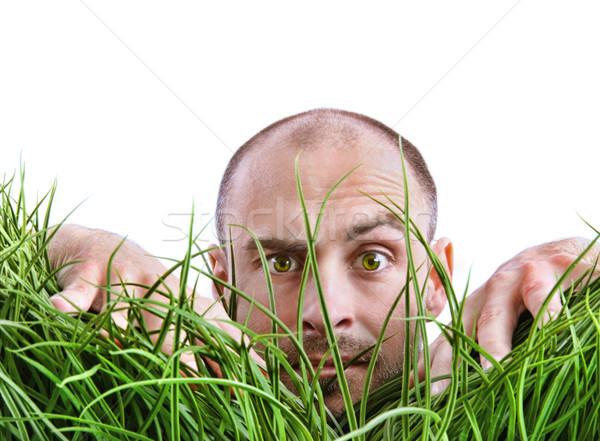 Man peering through tall grass Stock photo © Sandralise