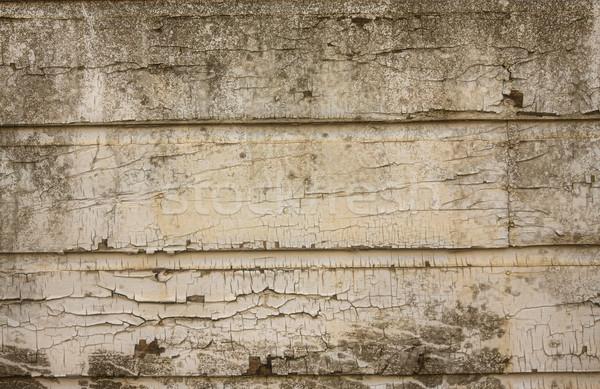 Peeling paint on grunge wooden wall Stock photo © Sandralise