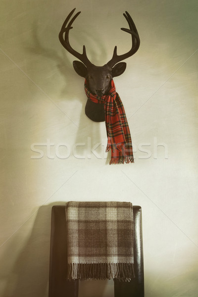 Mounted deer head with red plaid scarf and chair below Stock photo © Sandralise