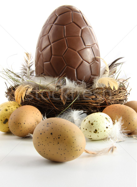 Big chocolate easter egg in nest with feathers Stock photo © Sandralise
