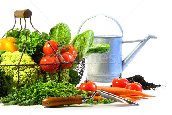 Fresh vegetables with watering can Stock photo © Sandralise