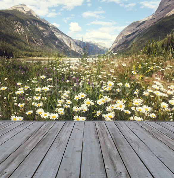 Wooden deck overlooking view of mountains Stock photo © Sandralise