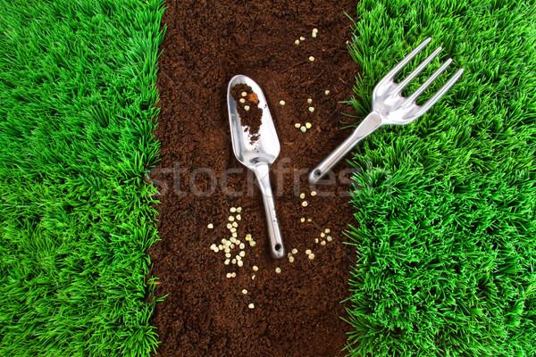 Garden tools on earth Stock photo © Sandralise