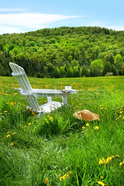 Relajante verano silla campo alto hierba Foto stock © Sandralise