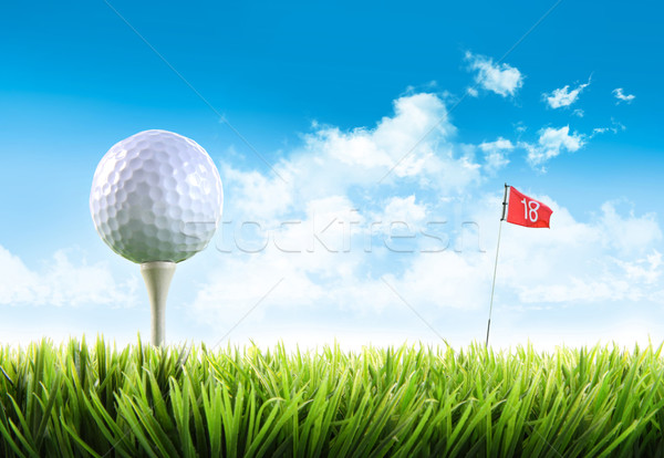 Golf ball with tee in the grass against blue sky  Stock photo © Sandralise