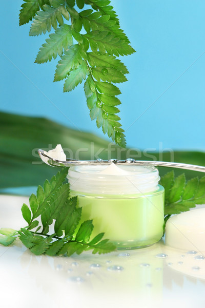 Rejuvenating face cream with green ferns  Stock photo © Sandralise