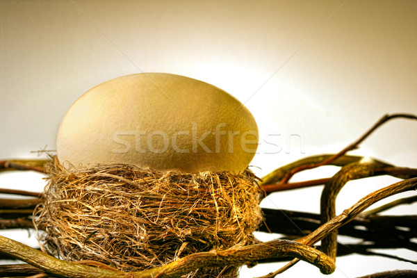 Big golden egg in  bird's nest Stock photo © Sandralise