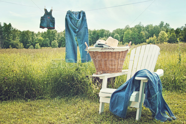 Jeans hanging on clothesline on a summer afternoon Stock photo © Sandralise