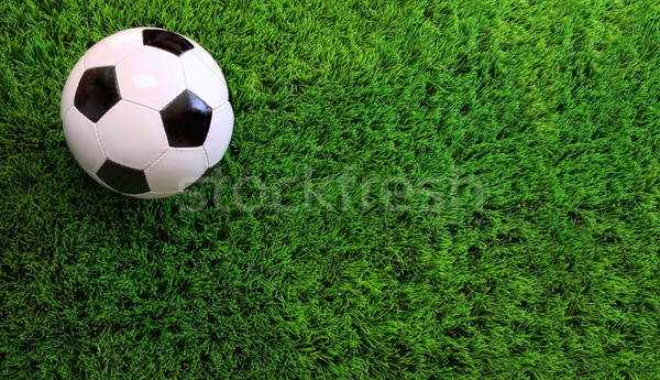 Soccer ball on green grass Stock photo © Sandralise