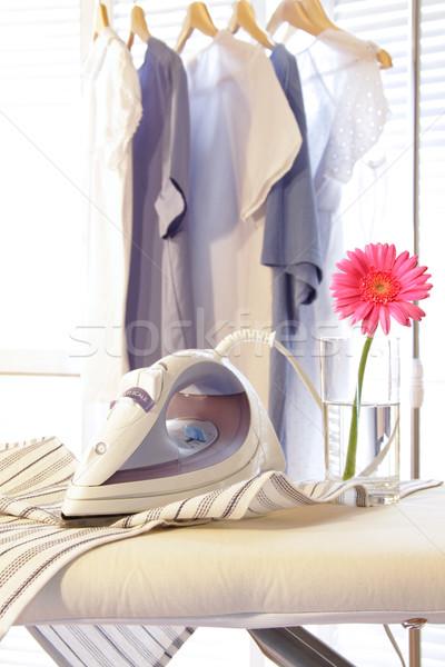 Hierro bordo lavandería habitación flor Foto stock © Sandralise