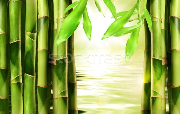 Bambusz egymásra pakolva oldal víz fa természet Stock fotó © Sandralise