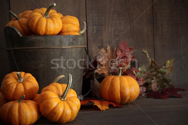 Miniatura drewniany stół liści pomarańczowy Zdjęcia stock © Sandralise