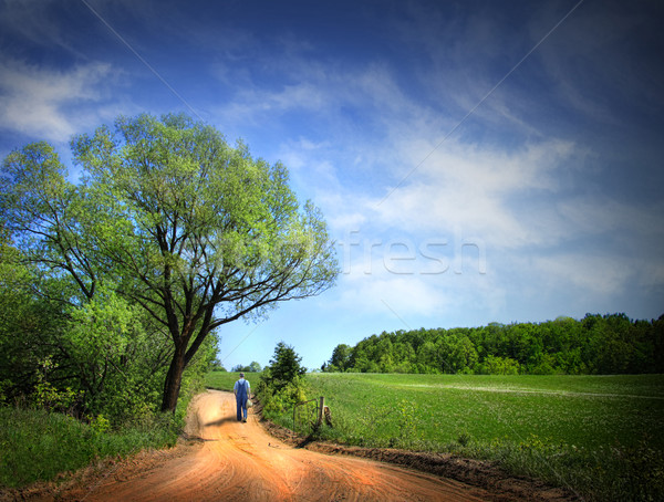 Dusty road on a beautiful spring day Stock photo © Sandralise