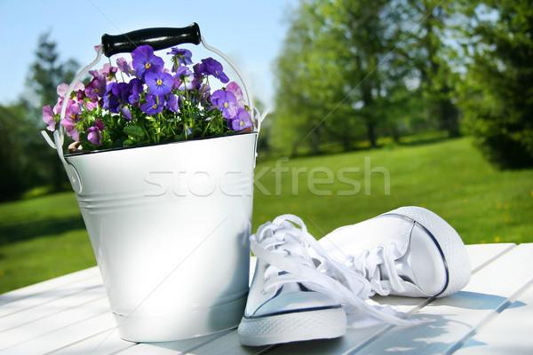 Bianco scarpe da corsa tavola moda verde esecuzione Foto d'archivio © Sandralise