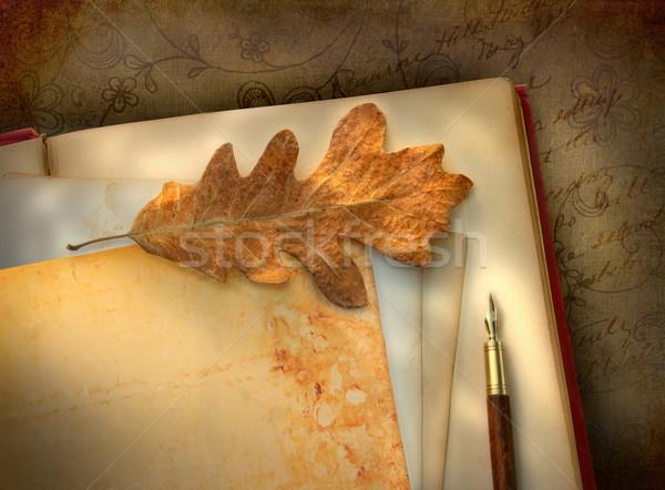 Vintage  paper, leaf with pen Stock photo © Sandralise