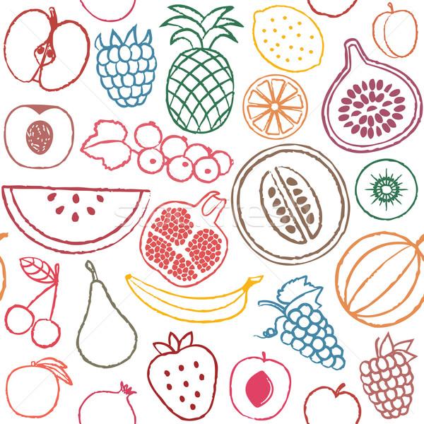Meyve vektör meyve Stok fotoğraf © sanjanovakovic