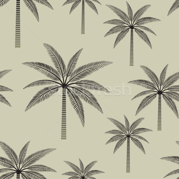 Vintage palmeras vector Foto stock © sanjanovakovic