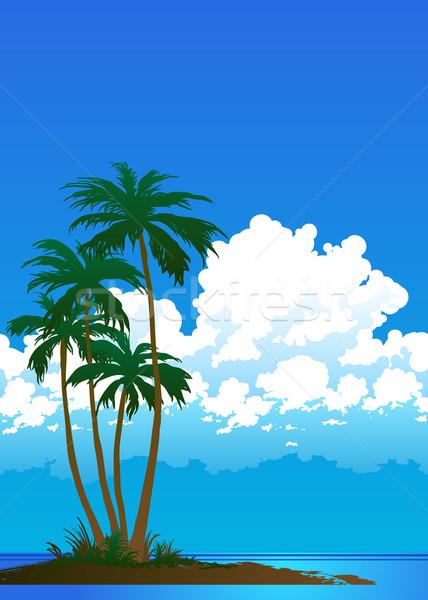 Palma praia praia tropical palmeiras céu oceano Foto stock © sanyal