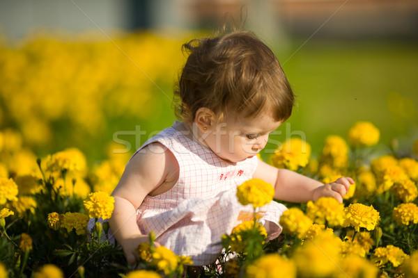 Stok fotoğraf: Küçük · kız · çiçekler · bir · yıl · bebek · oturma