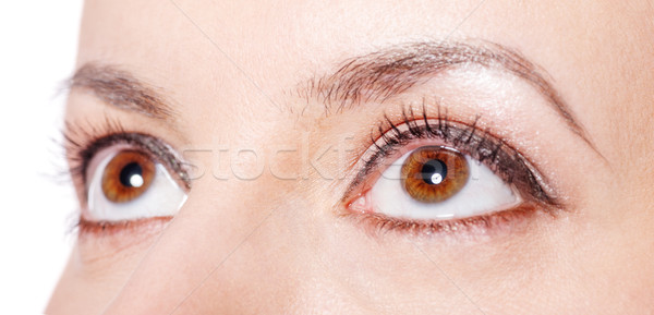 Bruine ogen mooie jong meisje ogen jonge Stockfoto © sapegina