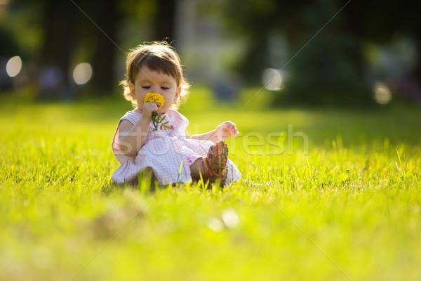 Stok fotoğraf: Küçük · kız · bir · yıl · çiçek · yaz · park