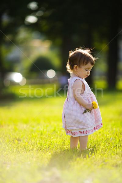 Stok fotoğraf: Küçük · kız · bir · yıl · çiçek · yaz