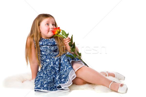 Kız gül küçük kız komik bakmak yalıtılmış Stok fotoğraf © sapegina