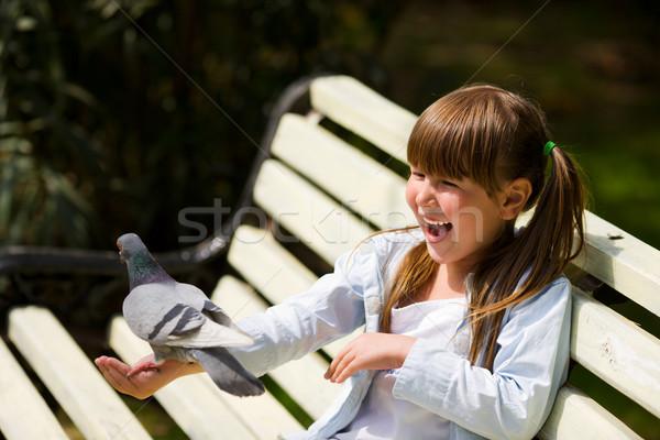 Kız güvercin mutlu gülme küçük kız Stok fotoğraf © sapegina